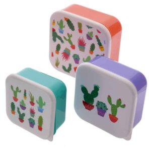 Puckador:Snackdoosjes Cactus